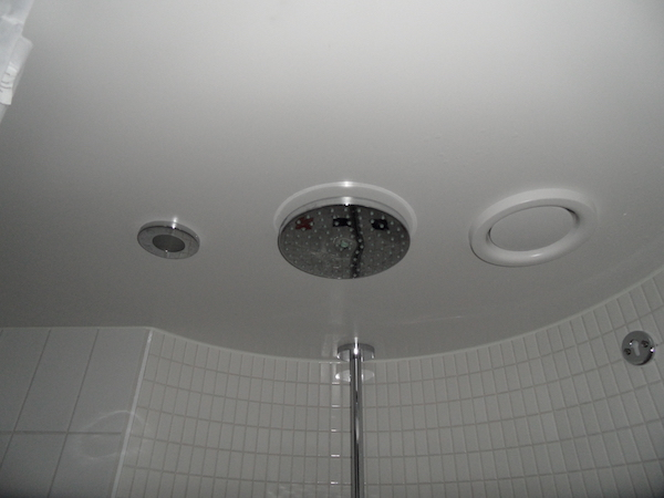 Disney Cruise Shower head